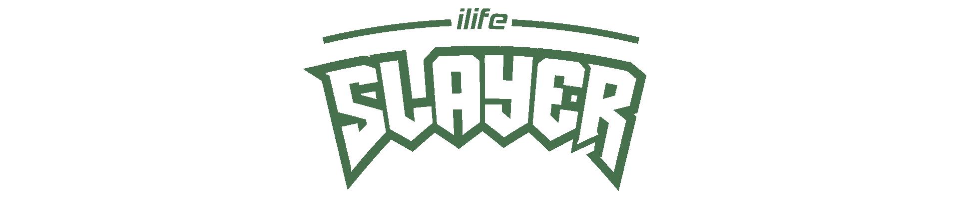 iLIFE Slayer  Doom Eternal Edition