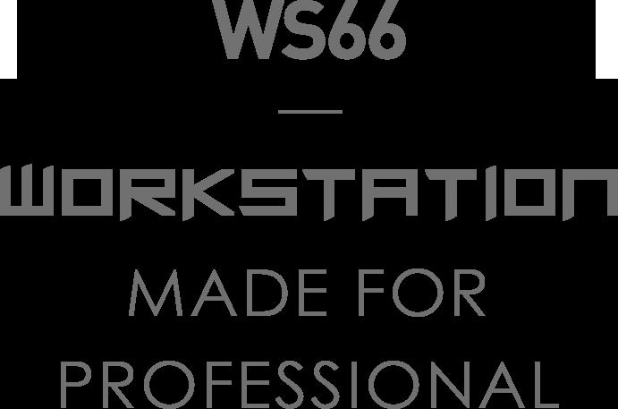 MSI WS66