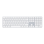 Apple Magic Keyboard plata  Teclado