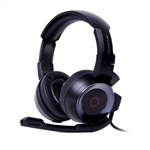 Avermedia SonicWave GH335 Negros - Auriculares