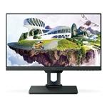 BenQ PD2500Q 2K QHD sRGB IPS - Monitor