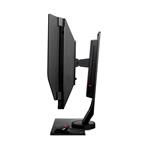 BenQ Zowie XL2536 ESPORT 24 FHD TN HDMI DP 144hz  Monitor