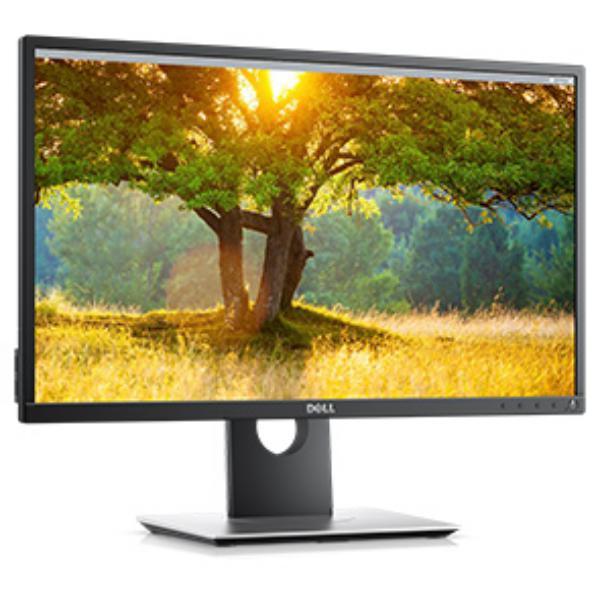 Dell 24 P2417H  Monitor