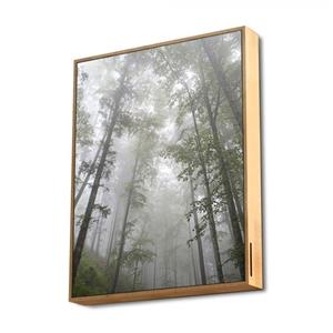 Energy Sistem Frame Speaker Forest 50W  Altavoz Bluetooth